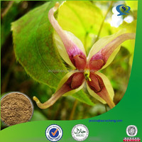 food grade epimedium extract,herba epimedium,herbal epimedium extraction