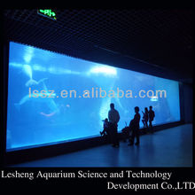 Outdoor Modern Aquarium Shark Tank