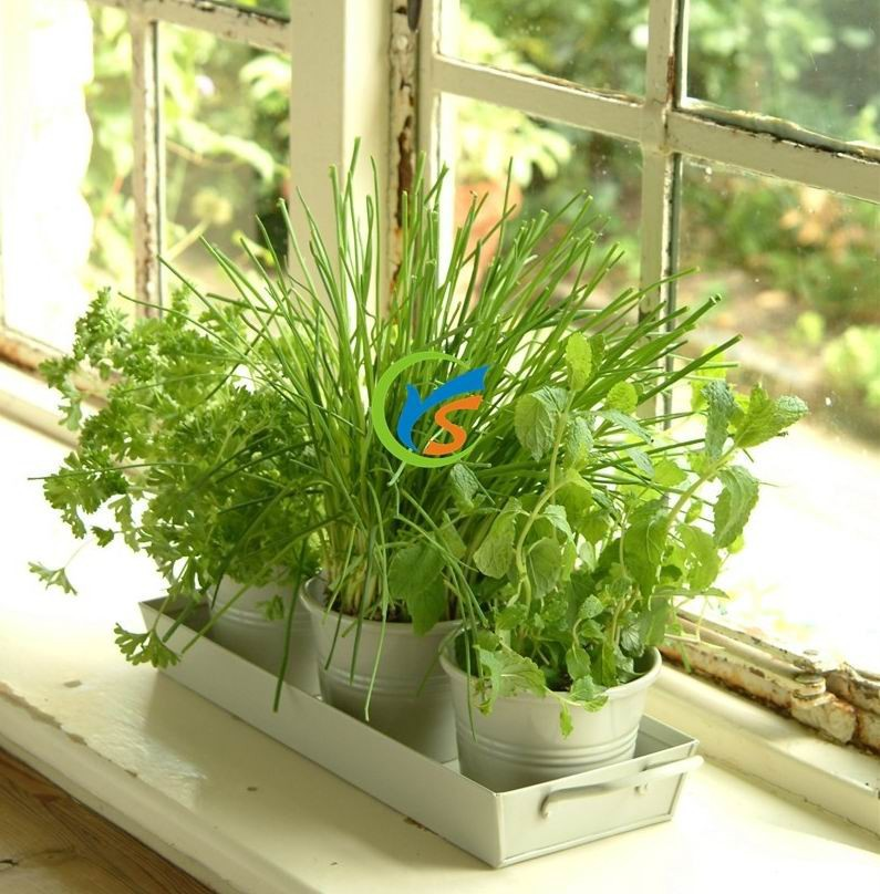 Wholesale Clay set of 3 metal window planter