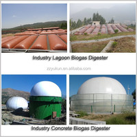 Biogas Project