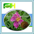 Spot Supply Natural Red Peony Root Extract