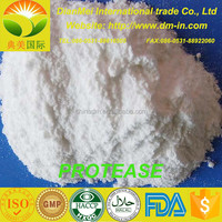 China high quality suppliers supply top quality alkaline protease enzyme