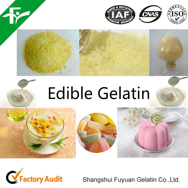 food grade gelatin medicine use/medical gelatin/halal gelatin powder