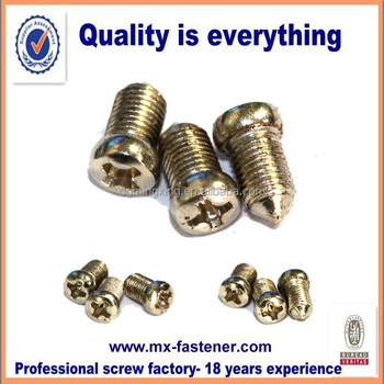 Custom made special head size tiny machine screws with tip point
