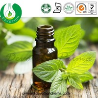 Therapeutic Grade Natural Peppermint Essential Oil