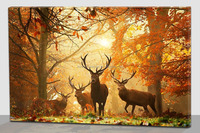 Fall season animal decorative pictures , wall art with led light