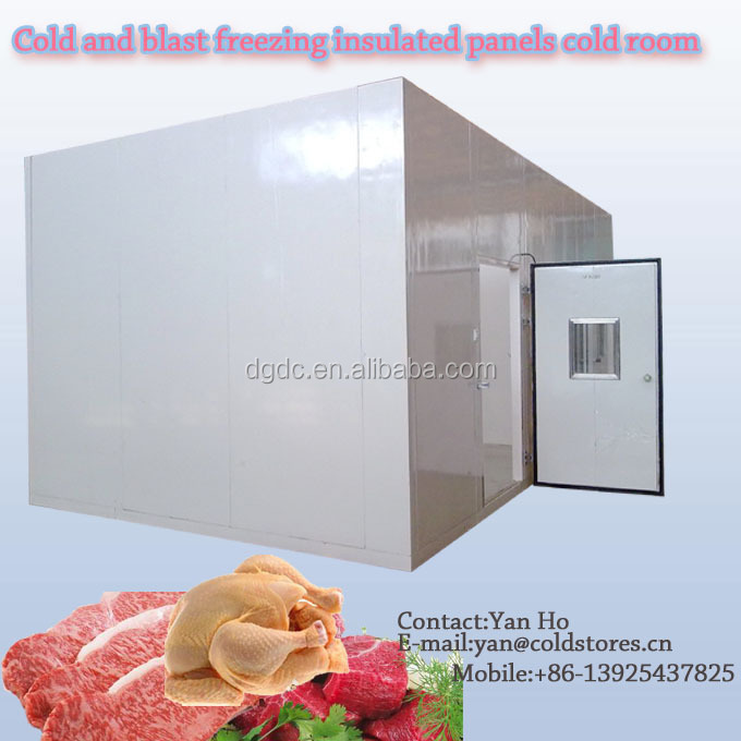 Cold and blast freezing insulated panels cold room
