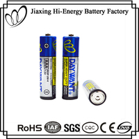 High Performance Carbon Zinc AAA 1.5V R03P Batteries