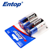 2 Years Warranty Eco-Frindly D R20P UM-1 Cells Battery
