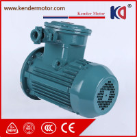 0.18kw-90kw Three Phase Explosion Proof Ac Motor With High Efficiency