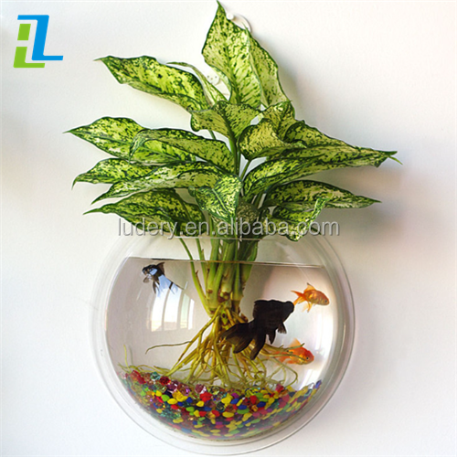 Custom Printing Logo Acrylic Oval Aquarium Fish Tank