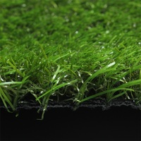 Low Price Basketball Court Natural Grass Carpet