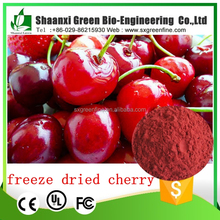 free sample 100% Natural Organic Freeze Dried cherry powder manufacturer