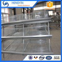 Fully automatic and new style layer cages / layer poultry rearing cages for sale