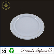 P101 10.25'' Plastic Dish Food Plate Set