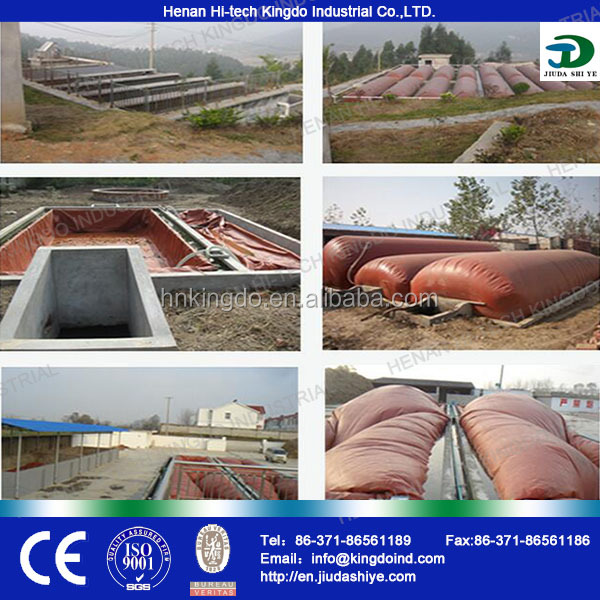 China Brand Family Size PFR Portable Mini Biogas Digester PVC Biogas Balloon Small Biogas Plant