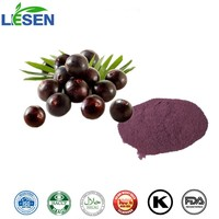 Top quality Acai Berry Extract/ Anthocyanin/ fruit powder