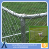6x10 Foot Outdoor Dog Kennel / Large Tall Chain Link fence cage