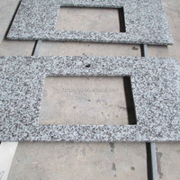 Chinese Supplier Offer Home Depot Granite Countertop