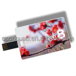 Promotional USB Card with your Own Logo USB flash drive