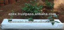 Coir Grow bags Suppliers for Tomato Plants