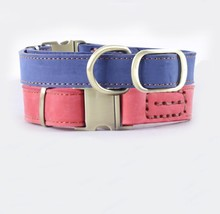 Blue Pink Wholesale Fashion Genuine Leather Dog Collar with Gold Buckle