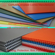 3mm 5mm pp plastic honeycomb core board
