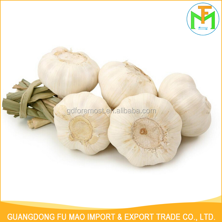 Cheap Price Wholesale Mesh Bag Organic 5.5Cm 6.0Cm Fresh Healthy Garlic For Sale