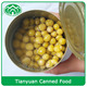 hot-sales high qualiy 3kg canned green peas