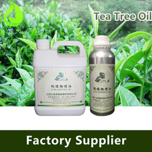 Skin Care Australian Tea Tree Oil Bulk For Face Wash Shampoo Making