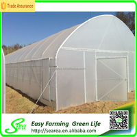 Hot Sale Single Span Plastic Greenhouse