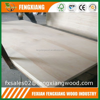 Plywood Wardrobe Design Birch Veneer 18mm