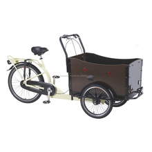 cargo bike three wheel cargo bike factory Adult Tricycle for Family Use Made in China SW-COB-C11
