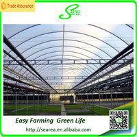 Modern planting industry auqaculture greenhouse