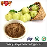 Emblic Fruit Extract Phyllanthus Emblica Extract Powder