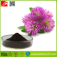 Plant Extract Red Clover Extract/Red Clover