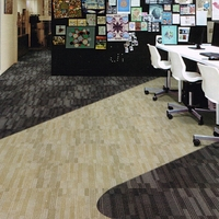 Wear-Resistant Thick Nylon Printed Office Carpet Tile