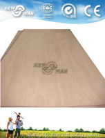 China/Indonesia/Malaysia commercial plywood