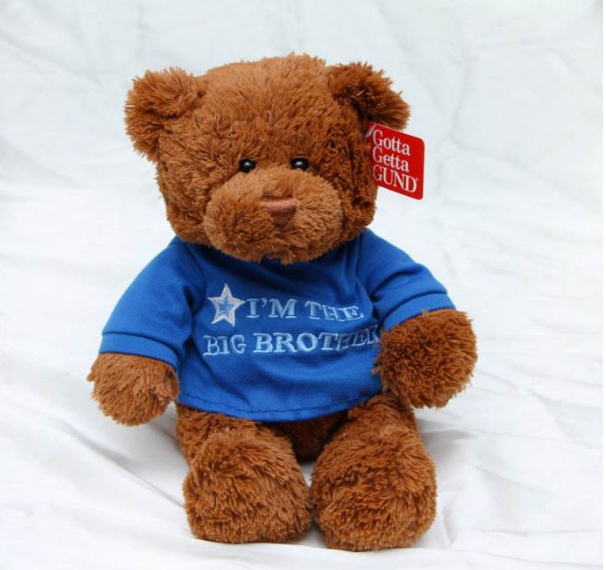 soft adorable bear stuff toy brown teddy bear plush toy wearing blue sports T-shirt