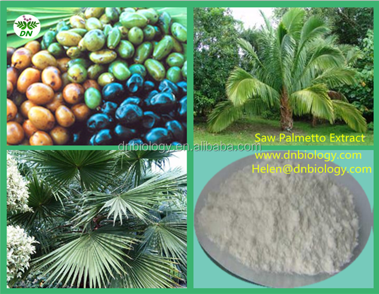 saw palmetto extract/saw palmetto extract 45%/saw palmetto frui extract powder