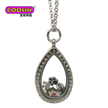 Stainless Steel Glass Memory Lockets with Zinc Alloy Custom Crown Float Charms for Necklace