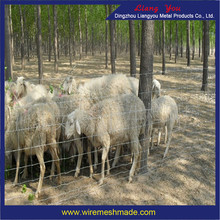 Galvanized Sheep Fence /electric fence for animals sheep