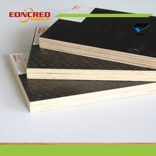 Film faced plywood & marine plywood for construction use