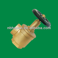Brass Fire Fighting Hydrant Water Valve and Landing Valve