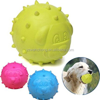 Blow Molded TPR Bite Resistant Teeth Cleaning Dog Chew Toy