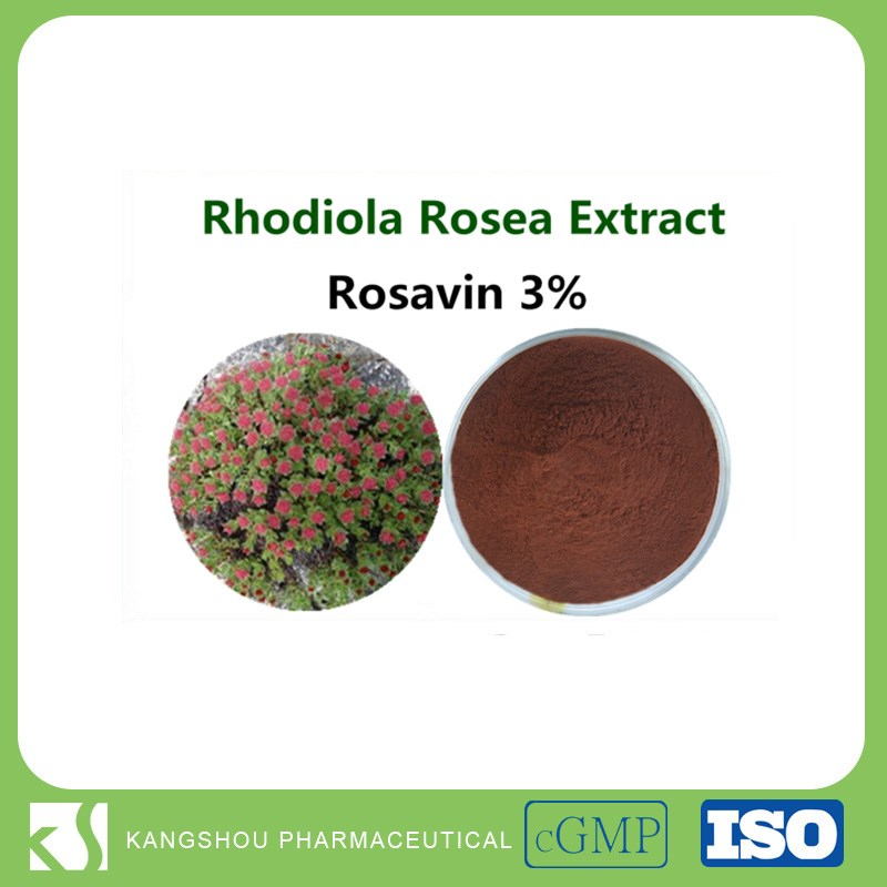 GMP factory provide High quality rhodiola rosea extract rhodiola rosea P.e