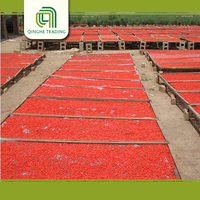Hot selling organic dried goji berries for wholesales goji supplier