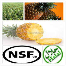 Natural Plant Enzyme Bromelain
