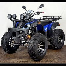 NEW 4 Wheel drive 250cc ATV,Amphibious atv for adults