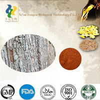 Best quality man product catuaba extract, Catuaba bark extract&Catuaba P.E., wholesale catuaba bark extract powder